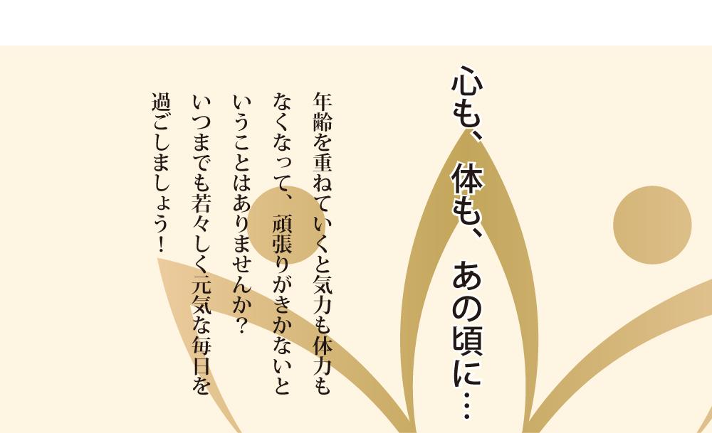 若源HPb_02